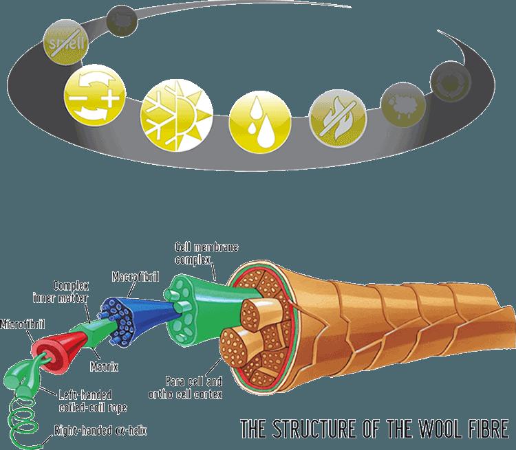 vlna-vlakno-schema
